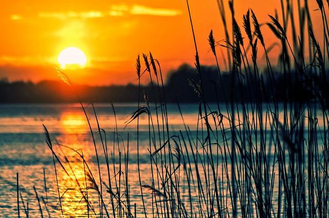 Paprocany Jezioro Koło Promnic