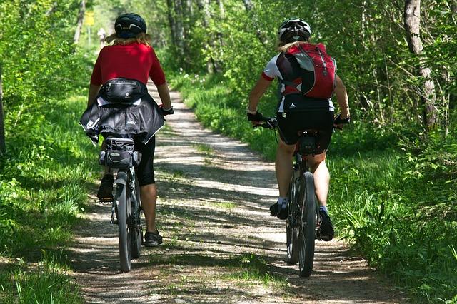 Rowerzyści na rowerze w lesie